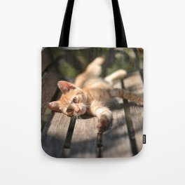 Stretching Tote Bag