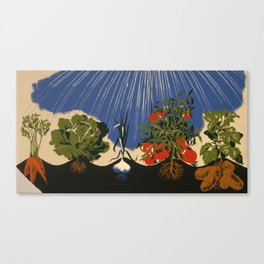 Vintage Vegetable Garden Illustration (1943) Canvas Print