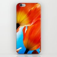 tulips iPhone & iPod Skins featuring Tulips by Ylenia Pizzetti