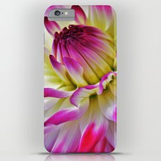 Dahlia iPhone 6 Plus Slim Case