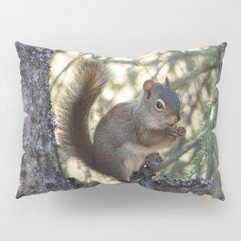 Soldotna Red Squirrel Pillow Sham