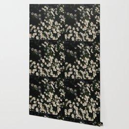 Dank Daisies Wallpaper
