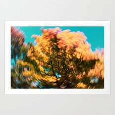 golden swirl Art Print