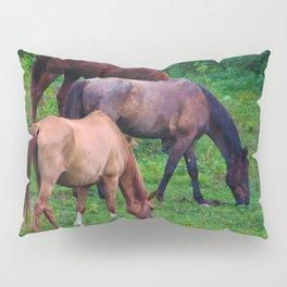 Grazing Horses Pillow Sham