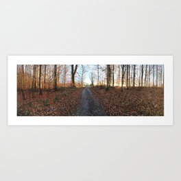 Forest in the Fall Art Print