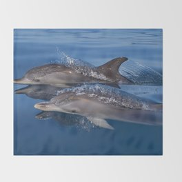 Beautiful Spotted dolphins Stenella frontalis Throw Blanket