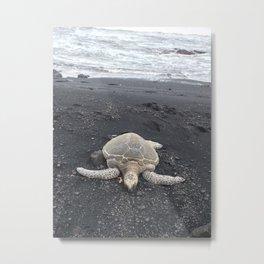 Turtle Rest Stop Metal Print