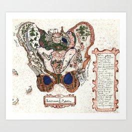 Sacrum & Pelvis Art Print