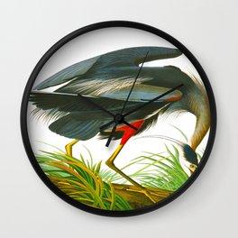 Great blue heron John James Audubon Vintage Scientific Bird Illustration Wall Clock