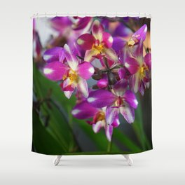 Mom's Magenta Grass Orchids Shower Curtain