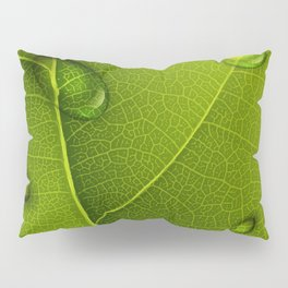 Condition Of Life Pillow Sham