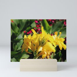 Saffron Canna Mini Art Print