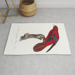 The Red Lory Eos bornea from Natural History of Parrots (1801-1805) by Francois Levaillant Rug