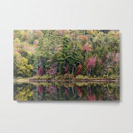 saturated landscape Metal Print
