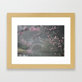 Plum Blossom Festival Framed Art Print