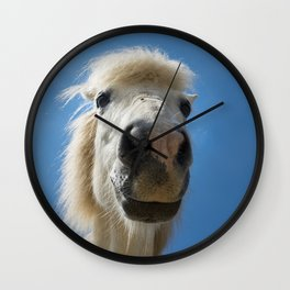 Funny Horse Wall Clock