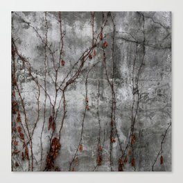 Silver Wall Canvas Print