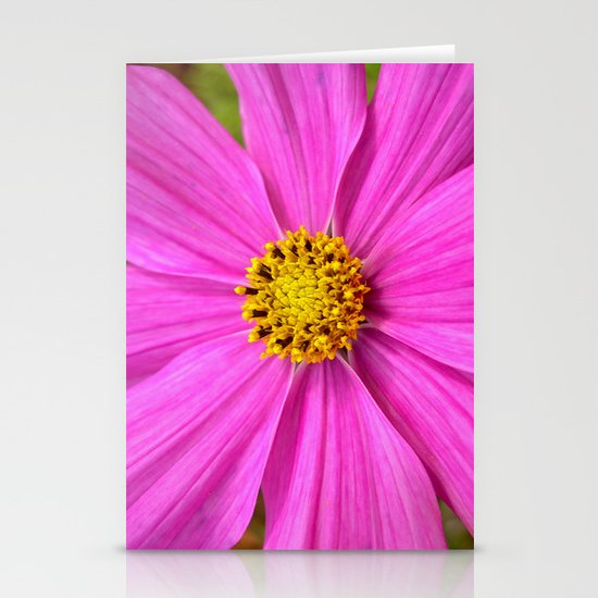 pink cosmos I Stationery Cards