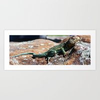 lizard Art Prints featuring Lizard by Christy Leigh