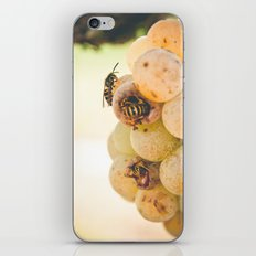 Beez in the Trap iPhone & iPod Skin