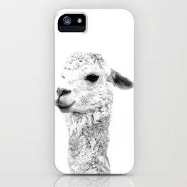 Black and white alpaca animal portrait iPhone Case