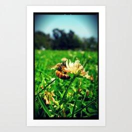 Bee @ Work Art Print