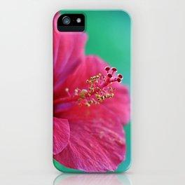 Pink Flower I iPhone Case