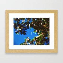 Summer Untitled Framed Art Print