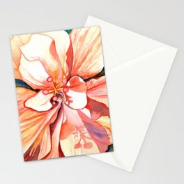 Double Peach Tropical Hibiscus Stationery Cards