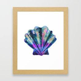 Seashell #7C Framed Art Print