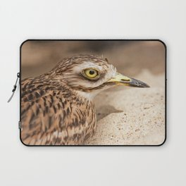Stone-Curlew Laptop Sleeve