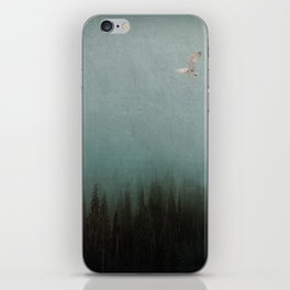 Look to the North iPhone Skin