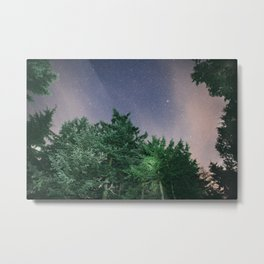 Light in the Trees and Stars in the Sky Metal Print
