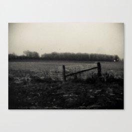 Desolation Fence Canvas Print
