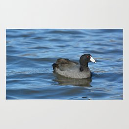 American Coot Rug