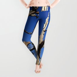 Trees of ancient times Leggings