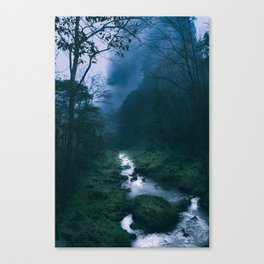 Moody Forest River Canvas Print
