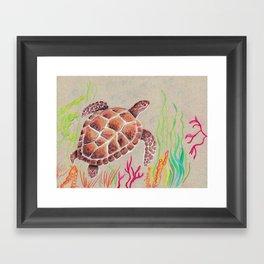 Tan Sea Turtle Framed Art Print