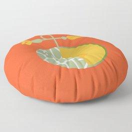 Fruit: Cantaloupe Floor Pillow