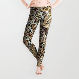 Leopard skin seamless pattern Leggings