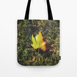 closeup green grass field with green leaf Tote Bag