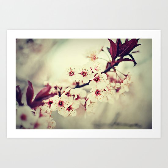 May Flowers Art Print