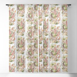 Ernst Haeckel Nepenthaceae Pitcher Plant Sheer Curtain
