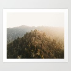 Chimney Point Art Print