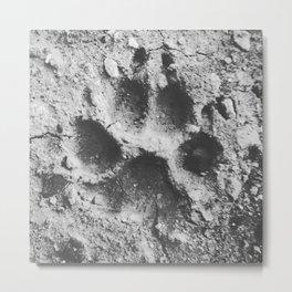 Puppy Paw Metal Print