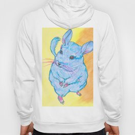 Chinchilla's name is Cotton Candy Hoody