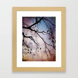 Late Autumn Framed Art Print