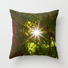 flash scape Throw Pillow