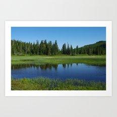 Paradise Meadows Pond Art Print
