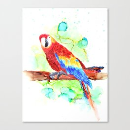 Watercolored Parrot Canvas Print